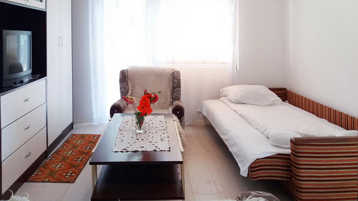 Apartman Aronija - Dnevna soba: krevet